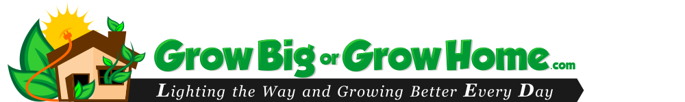 Grow Big or Grow Home header image