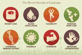 physical benefits of gardening