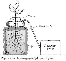static solution in jar hydroponics