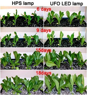 yield hps vs led