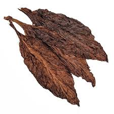 tobacco leaf dry